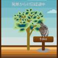 キーワード★オゾン層破壊